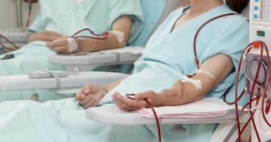 Így kaphatnának új szervet a vesebetegek